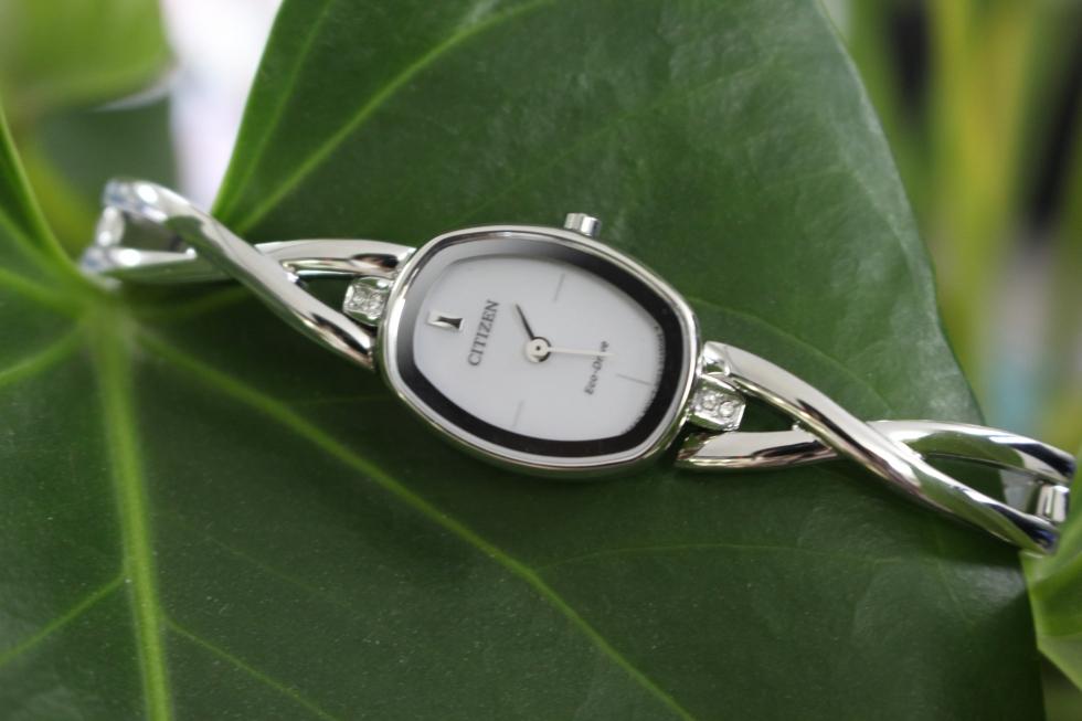 Kết quả hình ảnh cho Đồng hồ EX1410-88A